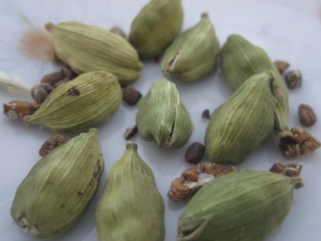 Indian Cardamon Seed Pods & Seeds